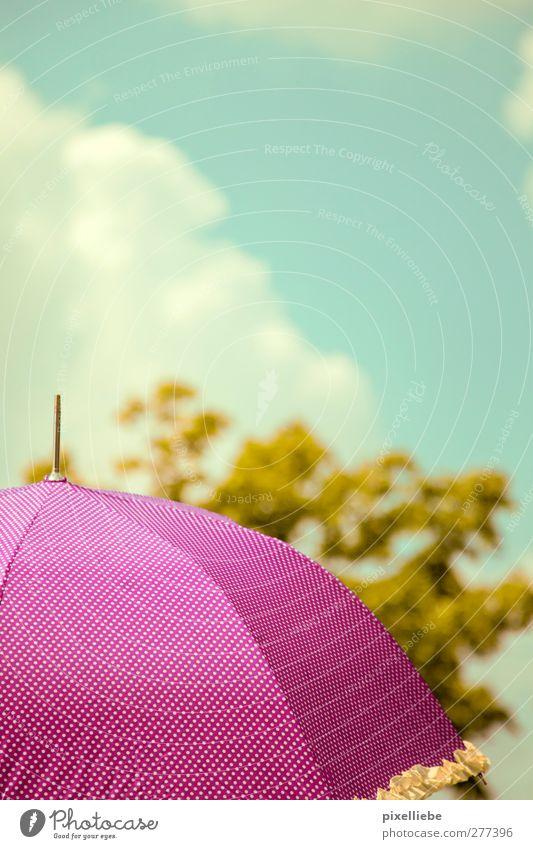 Sonnenschirm Himmel Wolken Sonnenlicht Frühling Sommer Schönes Wetter Wärme Baum Grünpflanze Erholung Freundlichkeit Kitsch violett rosa Klima Regenschirm Punkt