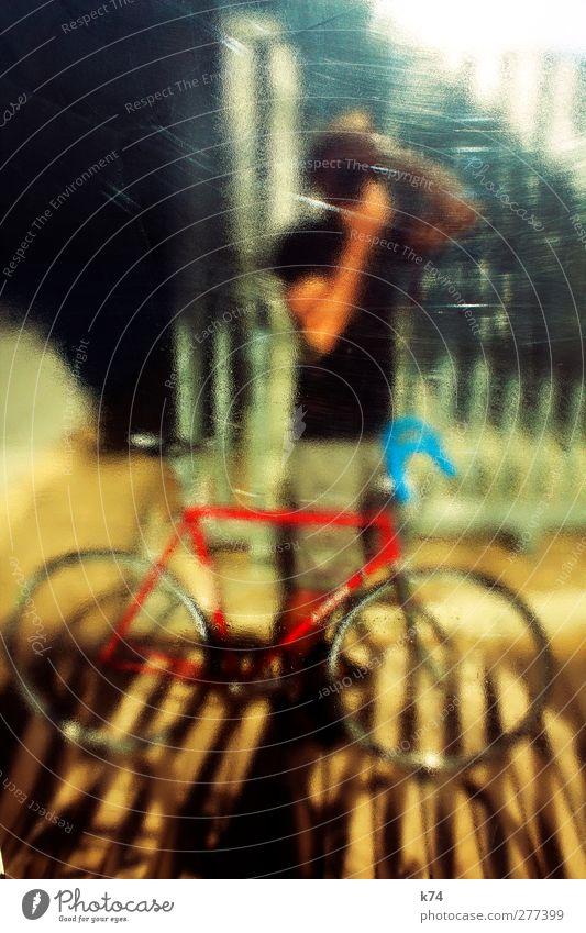 Der Typ mit dem Fahrrad Fahrradfahren Mensch maskulin Mann Erwachsene 1 30-45 Jahre T-Shirt stehen glänzend Rennrad Fotografieren Farbfoto mehrfarbig