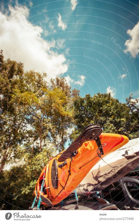 Kanufahrt Himmel Natur Ferien & Urlaub & Reisen Sommer Baum Wolken Landschaft Umwelt orange Freizeit & Hobby Ausflug authentisch Abenteuer Schönes Wetter Güterverkehr & Logistik trocken