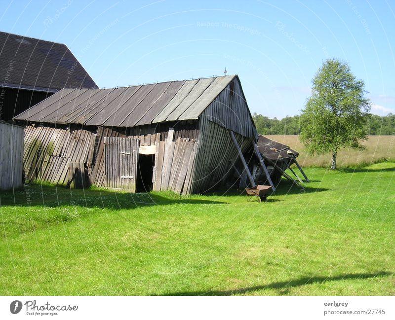 Tür zu! Es zieht! alt grün Wiese Holz Architektur Tor verfallen Rost Scheune saftig Sachsen umfallen Birke abstützen Schubkarre