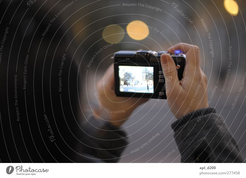 Licht einfangen Mensch Jugendliche Ferien & Urlaub & Reisen Hand Erwachsene dunkel feminin grau 18-30 Jahre Zufriedenheit Freizeit & Hobby Fotografie elegant