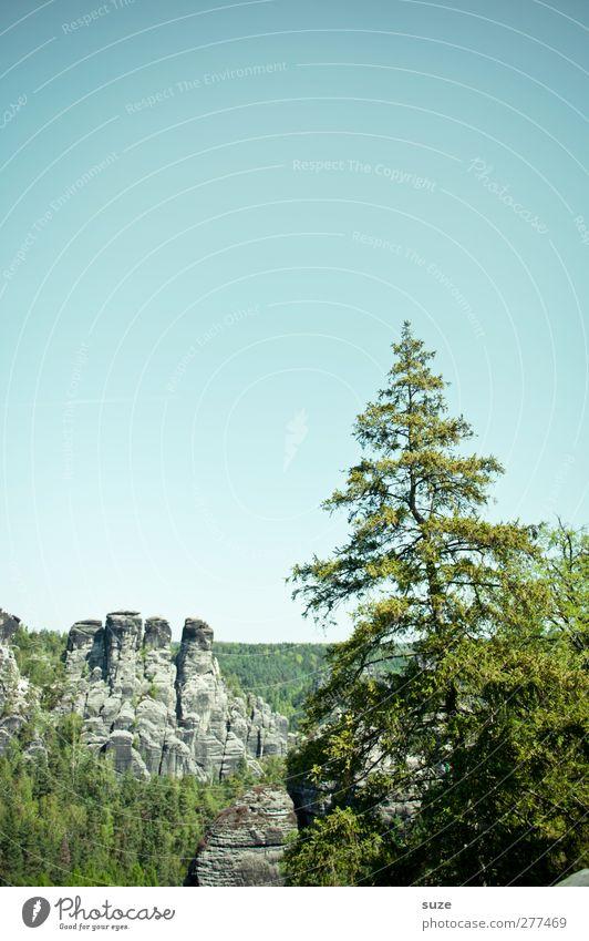 Ä tännschen, please. Ferne Freiheit Berge u. Gebirge Umwelt Natur Landschaft Pflanze Himmel Wolkenloser Himmel Klima Schönes Wetter Baum Felsen Wachstum