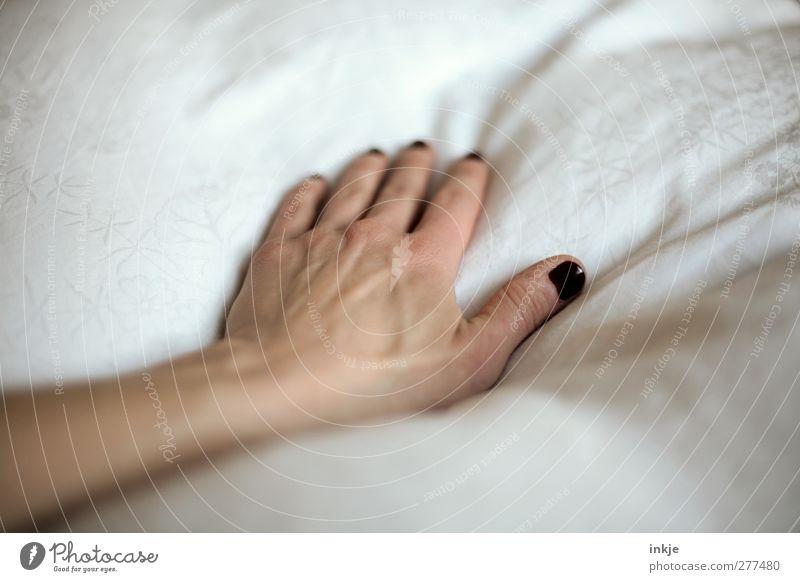 fühlen... Frau weiß Hand schön ruhig Erwachsene Erholung Gefühle Gesundheit liegen Gesundheitswesen Finger Häusliches Leben Pause weich Sauberkeit