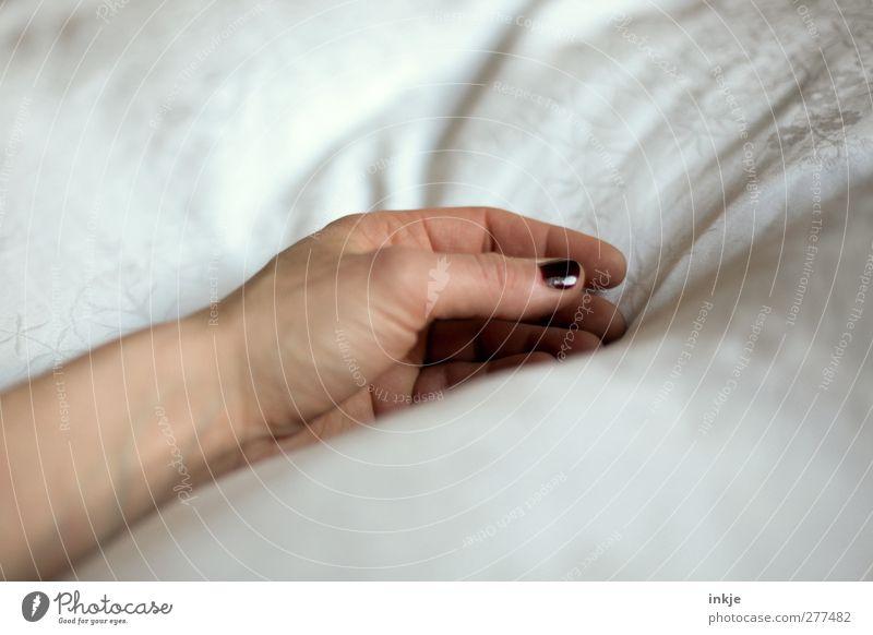 ...einschlafen Frau weiß Hand ruhig Erwachsene Erholung Leben Gefühle Stimmung liegen Gesundheitswesen Häusliches Leben Pause Bett weich Sauberkeit
