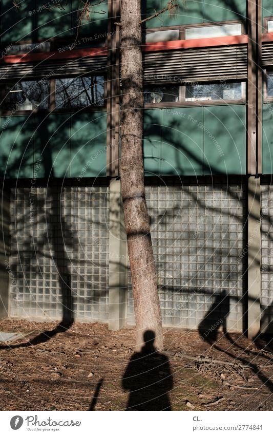 baum mit schatten Mensch Baum Fenster Erwachsene Wand Gebäude Mauer Fassade Schönes Wetter Identität komplex