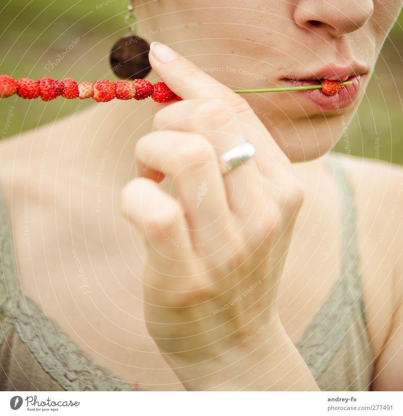 Leckere Wald-Erdbeeren Picknick Bioprodukte Vegetarische Ernährung Diät Lifestyle feminin Junge Frau Jugendliche berühren Essen genießen Küssen ästhetisch