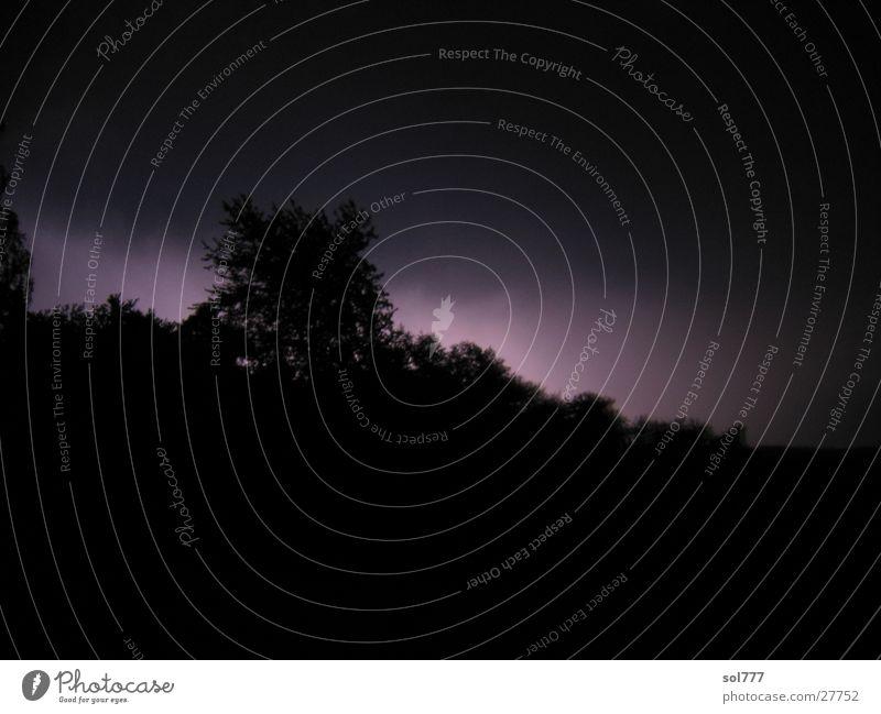 Baumblitzend Blitze Gegenlicht Silhouette schwarz dunkel Nacht Langzeitbelichtung Gewitter unheinlich