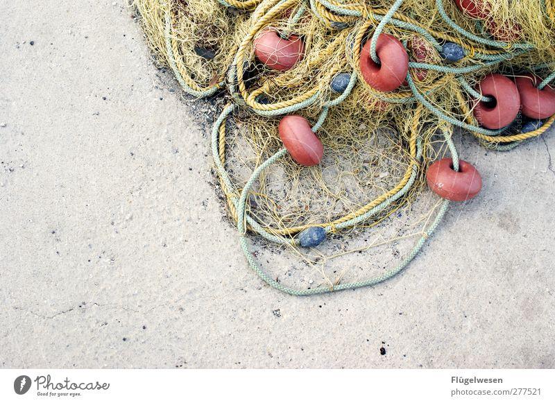 Neuer Tag neues Glück Fischereiwirtschaft Fischernetz Farbfoto Außenaufnahme Textfreiraum links Bildausschnitt