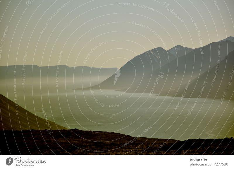 Island Umwelt Natur Landschaft Wasser Felsen Berge u. Gebirge Fjord kalt schön wild Stimmung Idylle ruhig Nebel Dunst Farbfoto Gedeckte Farben Außenaufnahme