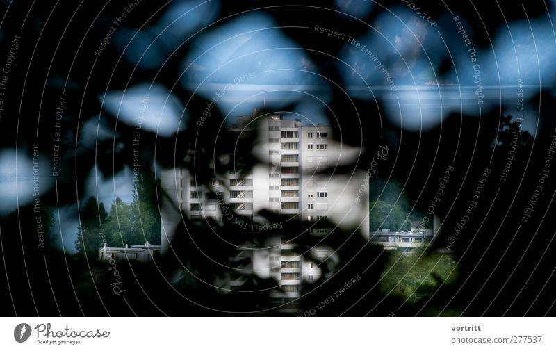 Durchblick Umwelt Natur Landschaft Sommer Baum See Haus Hochhaus Gebäude blau grau grün schwarz Berge u. Gebirge Beton Pflanze Farbfoto Gedeckte Farben