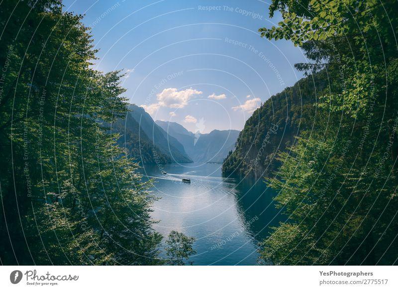 Königssee in den deutschen Alpen im Sommer Freude Tourismus Berge u. Gebirge Natur Landschaft Schönes Wetter Blatt Wald See frisch natürlich blau grün Idylle