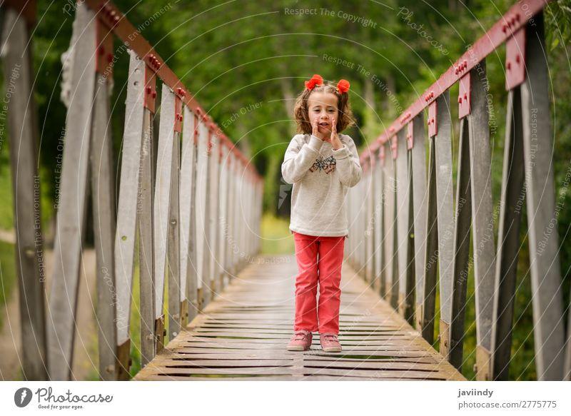 Süßes kleines Mädchen, das Spaß in einer ländlichen Brücke hat. Freude Glück schön Leben Spielen Kind Mensch feminin Kindheit 1 3-8 Jahre Natur Blume Lächeln