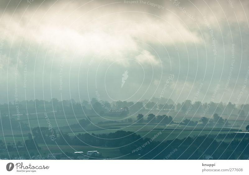 haze Umwelt Natur Landschaft Pflanze Himmel Wolken Sonnenlicht Sommer Schönes Wetter schlechtes Wetter Nebel Regen Baum Sträucher Feld Wald Hügel dunkel frisch