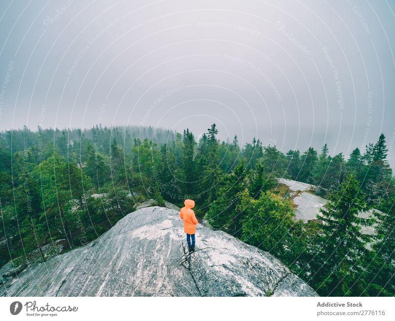 Tourist auf Felsen mit Blick auf die Wälder Mensch Reisender Natur Nebel Wald Wildnis geheimnisvoll Immergrün ruhig Erkundung Tourismus Idylle Landschaft