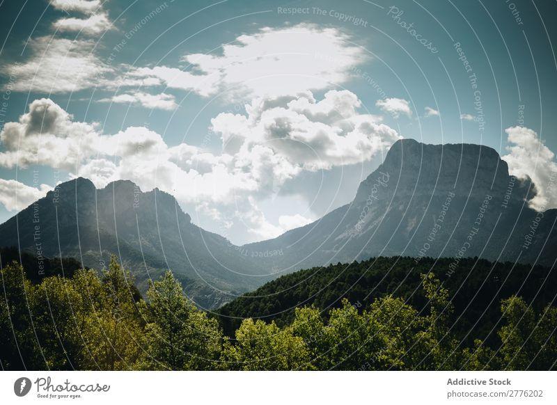 Ruhige grüne Berge Wald Klippe schön Berge u. Gebirge Landschaft Wolken Himmel Natur Aussicht wandern alpin Hügel Gipfel Höhe Reinheit friedlich Menschenleer
