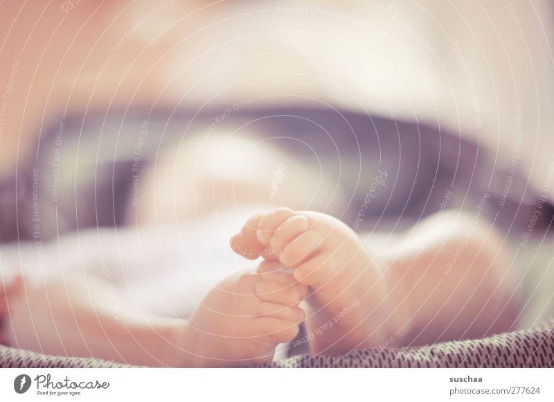 süße füße Kind Baby Kindheit Haut Beine Fuß 1 Mensch 0-12 Monate berühren Bewegung niedlich Leben Zehen Babyfüße neu Farbfoto Gedeckte Farben Innenaufnahme