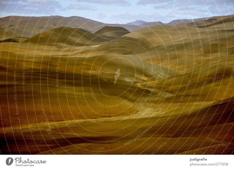 Island Umwelt Natur Landschaft Urelemente Erde Hügel Berge u. Gebirge fantastisch natürlich Wärme wild weich Stimmung Einsamkeit Ferne Hochebene Farbfoto