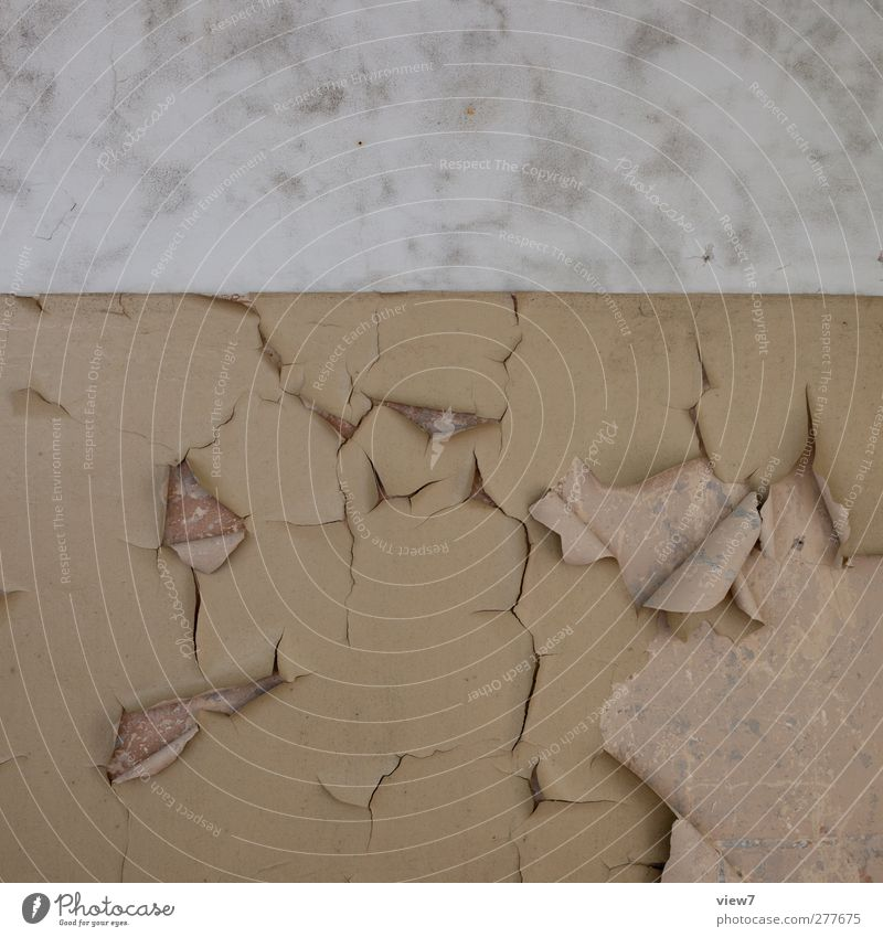 aufgegeben alt Haus Wand Mauer Stein Innenarchitektur Linie braun dreckig Beton authentisch Häusliches Leben Streifen Wandel & Veränderung retro Vergänglichkeit