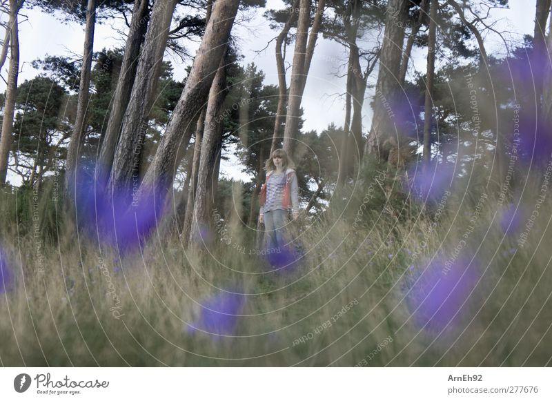 Lila Blumen Mensch Junge Frau Jugendliche 1 Umwelt Natur Landschaft Pflanze Baum Gras Sträucher Wiese Wald Blick stehen Farbfoto Außenaufnahme Tag