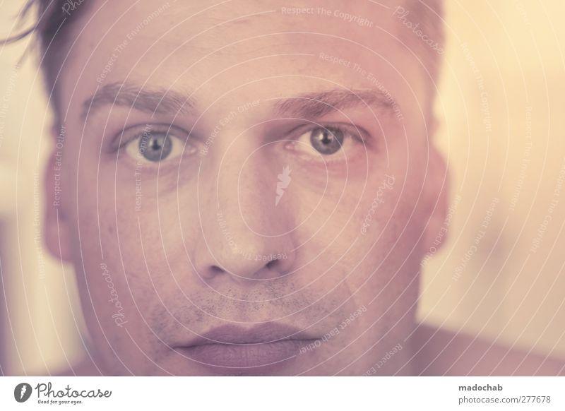 Portrait junger Mann Blickkontakt Mensch maskulin Junger Mann Jugendliche Erwachsene Leben Gesicht Auge 1 18-30 Jahre 30-45 Jahre ästhetisch authentisch schön