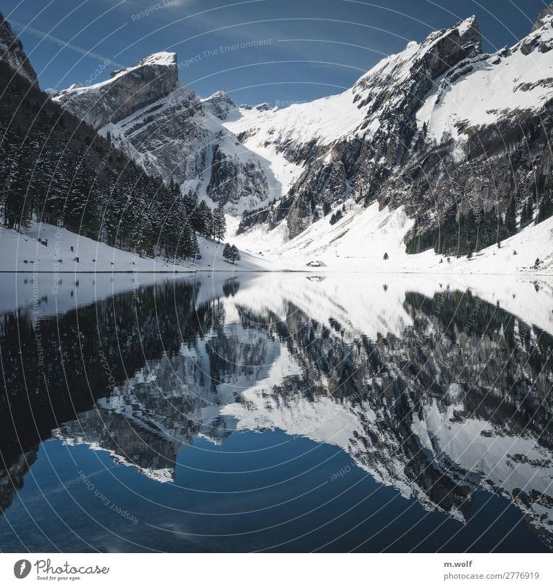 Seealpsee Schweiz Ferien & Urlaub & Reisen Natur Landschaft ruhig Winter Ferne Berge u. Gebirge Umwelt Schnee Tourismus Freiheit Ausflug wandern Wetter
