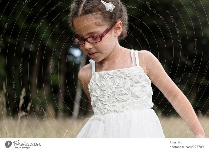 Auf der Wiese IV Mädchen 1 Mensch 3-8 Jahre Kind Kindheit Natur Landschaft Wetter Schönes Wetter Feld Wald Kleid Brille Haarspange Haare & Frisuren brünett