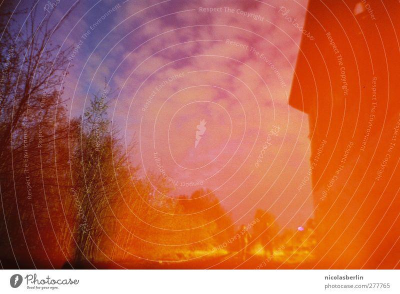 Light-Leak Experiments Haus Mensch 2 Umwelt Himmel Wolken Nachthimmel Klimawandel Park Wiese Wald Mauer Wand träumen dunkel verrückt Schüchternheit 35mm