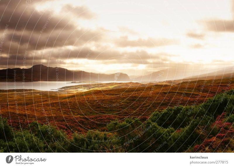 Natur Ferien & Urlaub & Reisen grün Meer Wolken Landschaft Wiese Berge u. Gebirge träumen hell Stimmung Wetter rosa Abenteuer Hügel Zauberei u. Magie