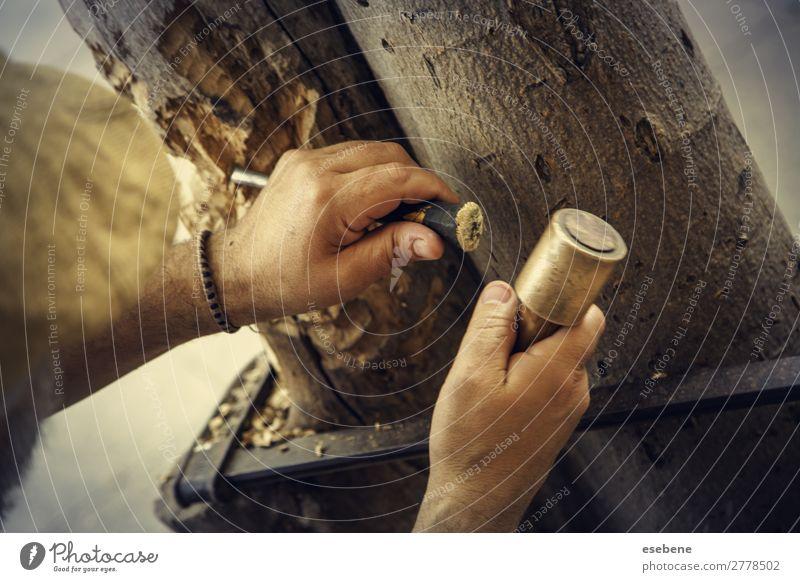 Schnitzen von Holz Design Dekoration & Verzierung Arbeit & Erwerbstätigkeit Industrie Handwerk Werkzeug Hammer Mensch Kunst Metall alt machen braun Kreativität