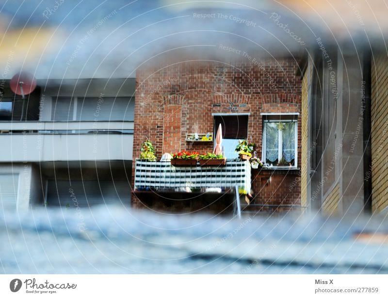 Balkonien Häusliches Leben Mauer Wand Fassade klein Balkonpflanze Balkondekoration Fenster Pfütze Farbfoto mehrfarbig Außenaufnahme Experiment Menschenleer
