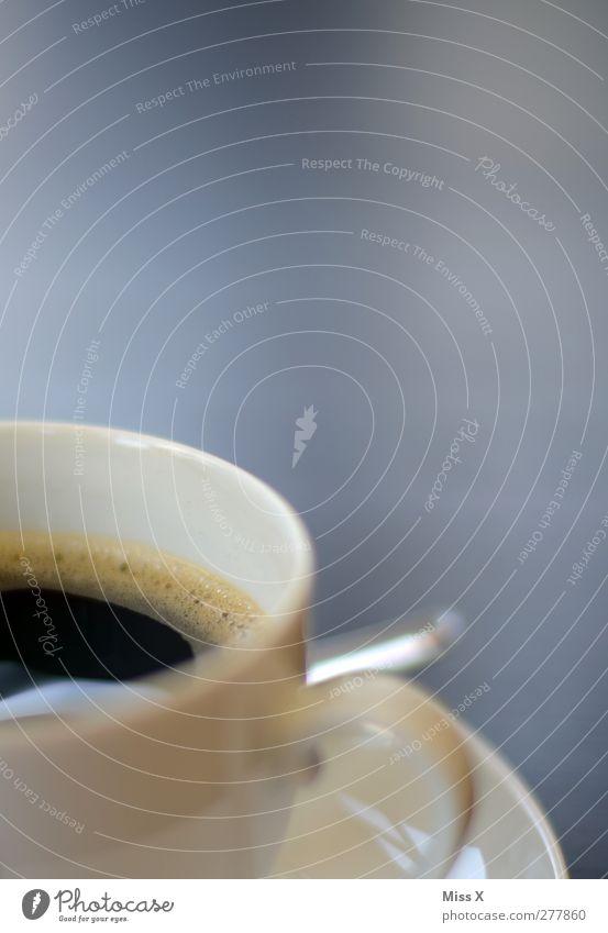 Kaffee Lebensmittel Ernährung Kaffeetrinken Getränk Heißgetränk Tasse Duft heiß lecker schwarz Farbfoto Nahaufnahme Menschenleer Textfreiraum oben