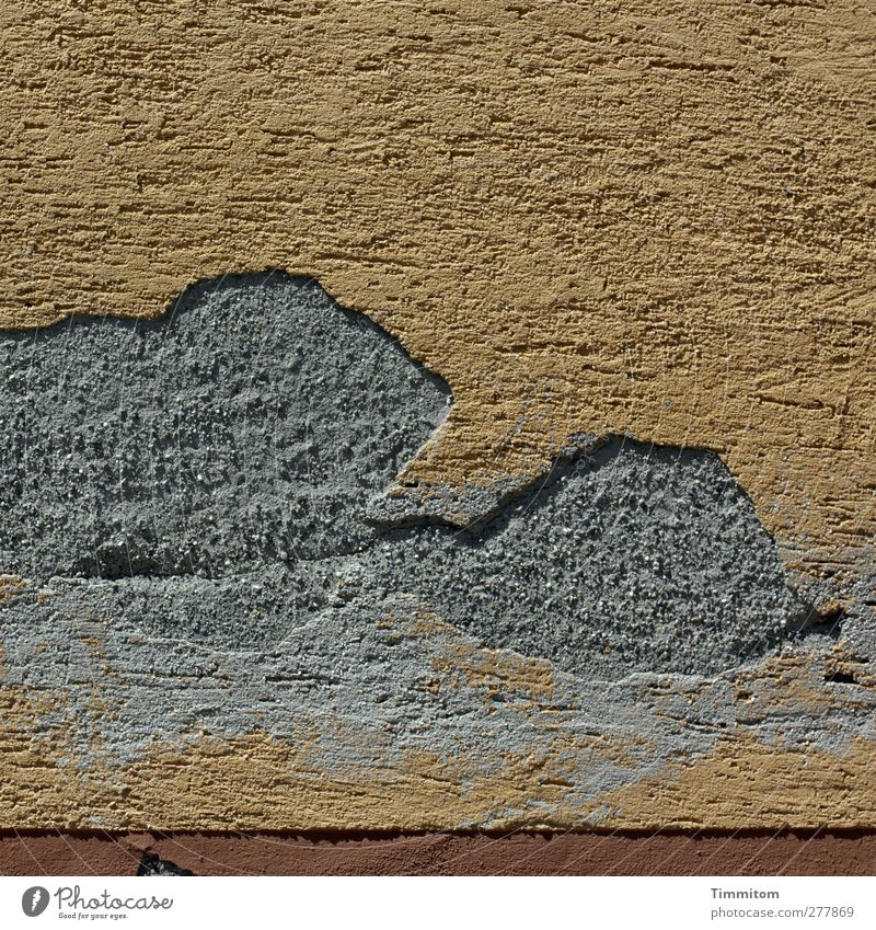Hagnauer Hauswand Häusliches Leben Mauer Wand Beton braun grau Putz Schaden Gestalt Tier Farbfoto Außenaufnahme Nahaufnahme Menschenleer Textfreiraum oben Tag