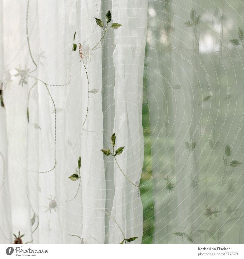 Guten Morgen und einen schönen Tag !! Häusliches Leben Wohnung Innenarchitektur Dekoration & Verzierung braun grau grün weiß Vorhang Gardine Stoff Aussicht