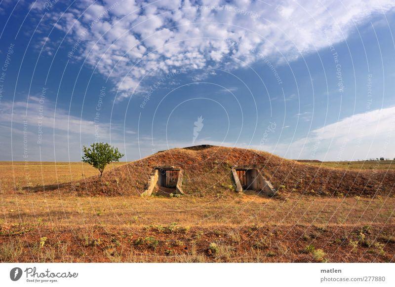 military Landschaft Pflanze Erde Himmel Wolken Horizont Sonnenlicht Sommer Schönes Wetter Baum Steppe Menschenleer Ruine Bunker Mauer Wand blau braun Krieg