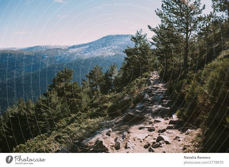 Landschaft der Sierra an einem sonnigen Tag Gesundheit Freizeit & Hobby Tourismus Ausflug Abenteuer Freiheit Expedition Winterurlaub Umwelt Natur Pflanze Erde