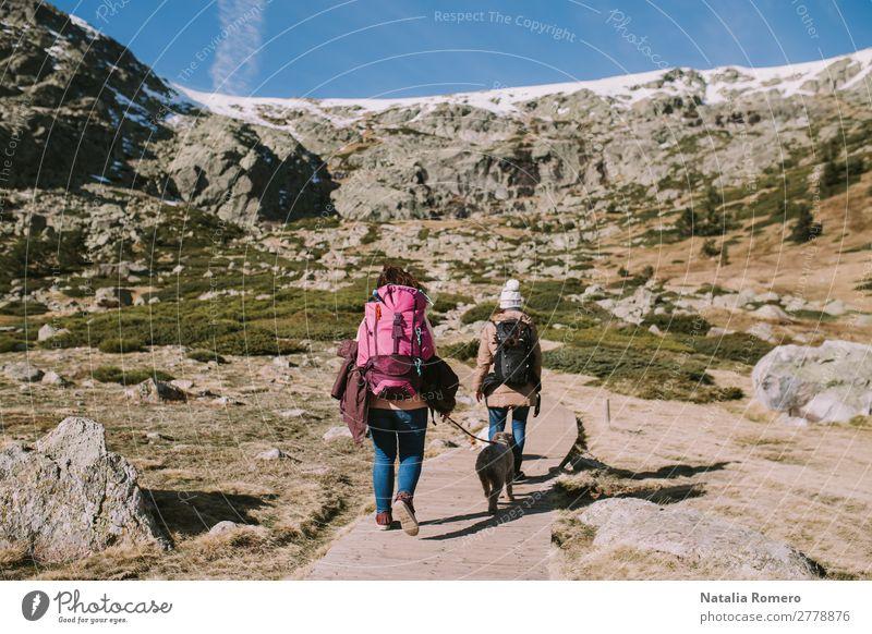 Zwei Frauen in Begleitung ihrer Hunde gehen auf der Wiese entlang. schön Leben Freizeit & Hobby Ausflug Abenteuer Freiheit Berge u. Gebirge wandern Mensch