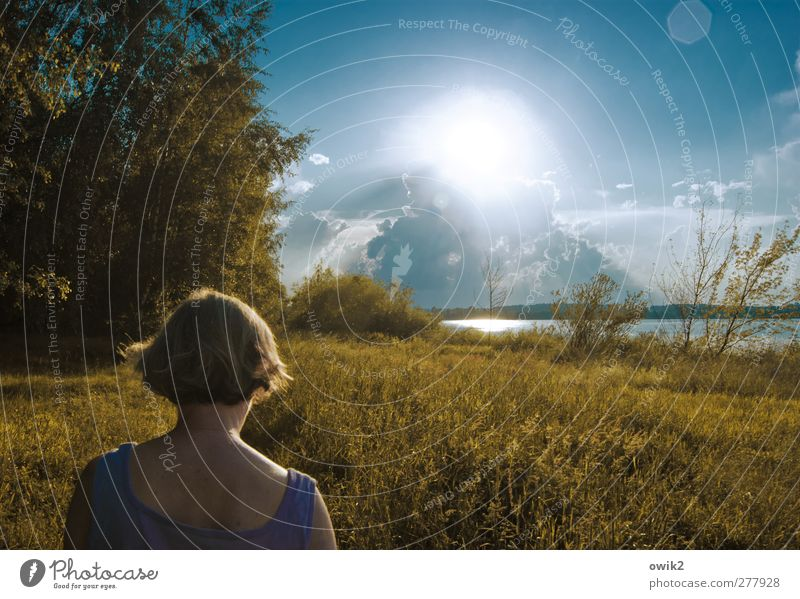 Pfadfinder Mensch Frau Himmel Natur Wasser Baum Pflanze Wolken Erwachsene Landschaft Ferne Umwelt Wärme Gras Frühling Haare & Frisuren