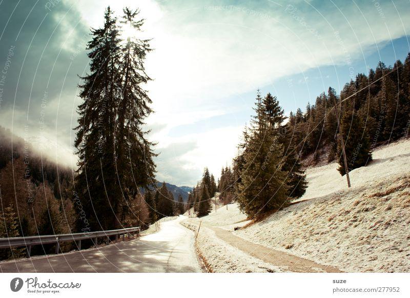 Sonne tanken Himmel Natur blau Ferien & Urlaub & Reisen Baum Wolken Wald Landschaft Umwelt Straße Berge u. Gebirge Schnee Wege & Pfade Felsen außergewöhnlich Klima