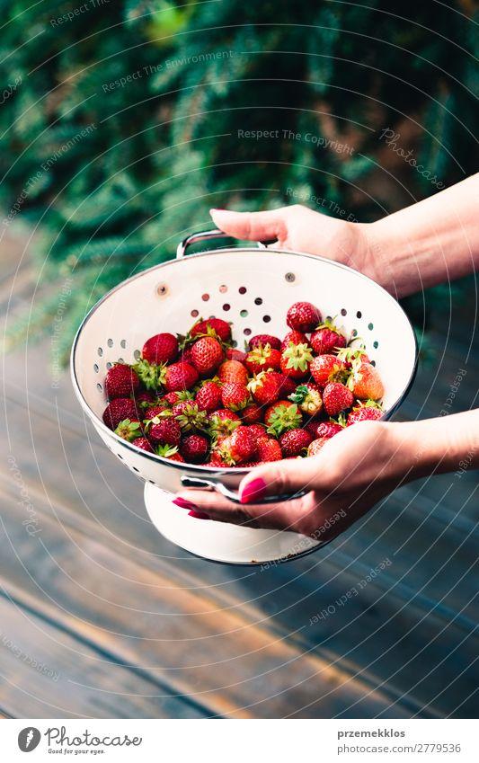 Schüssel mit frischen Erdbeeren besprüht Regentropfen über Holztisch Frucht Vegetarische Ernährung Schalen & Schüsseln Sommer Tisch Frau Erwachsene Hand Natur