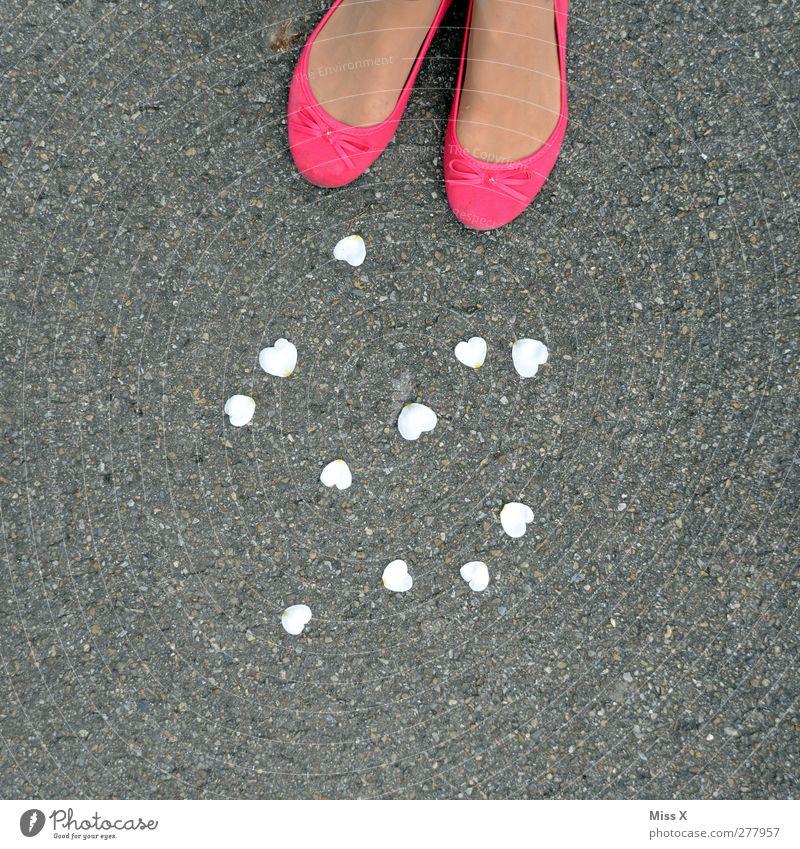 Herzdame Mensch feminin Fuß 1 Blüte rosa Gefühle Liebe Verliebtheit Rosenblätter Farbfoto mehrfarbig Außenaufnahme Textfreiraum rechts Textfreiraum oben