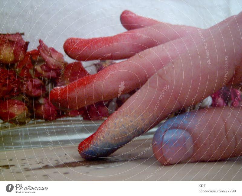 Handwerk............. Mensch Hand blau rot gelb Farbe Finger Rose