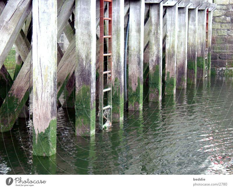 Steg ankern Wasserfahrzeug Holz Algen historisch