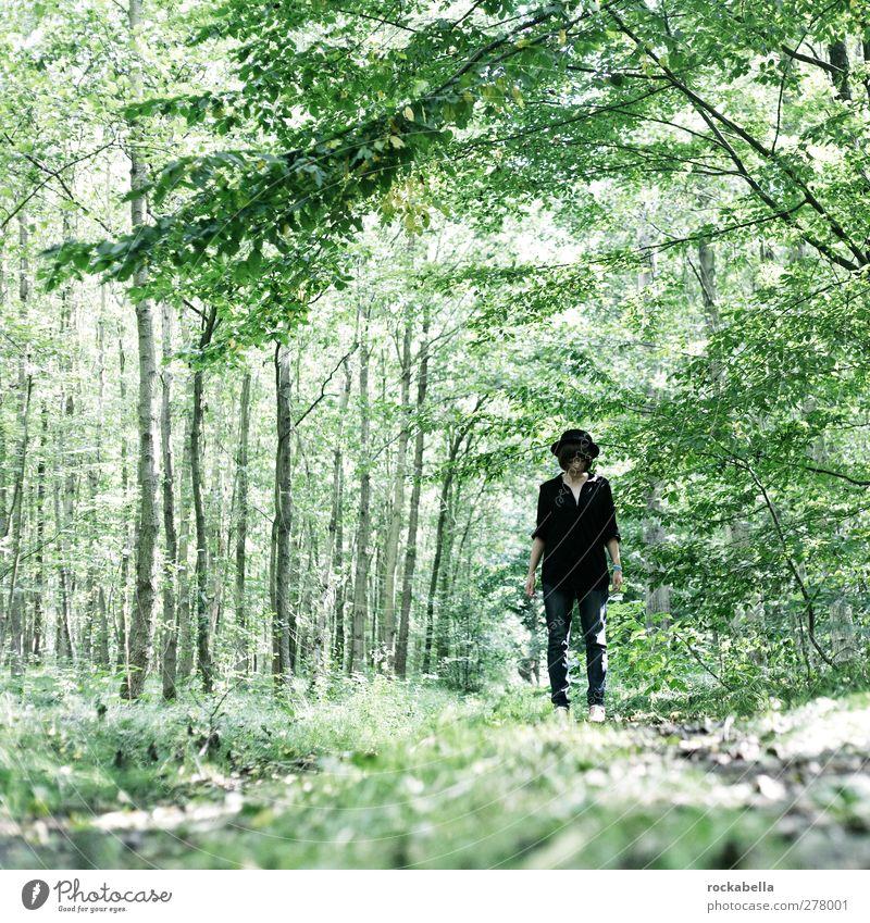 Frau im Wald feminin Junge Frau Jugendliche 1 Mensch 18-30 Jahre Erwachsene Umwelt Natur Landschaft Sommer Pflanze Hut schwarzhaarig brünett kurzhaarig elegant