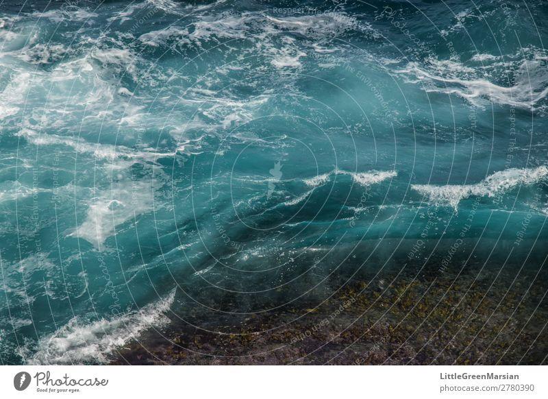in Bewegung Natur Urelemente Wasser Sommer Wellen Küste Strand Meer Pazifik Tasmanische See Stein nass natürlich blau türkis weiß chaotisch Strukturen & Formen
