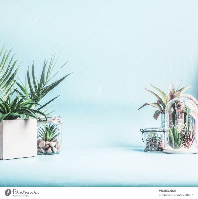 Grüne Zimmerpflanzen in Töpfen, Glas und Terrarium Stil Design Häusliches Leben Innenarchitektur Dekoration & Verzierung Tisch Natur Pflanze Kaktus Blatt