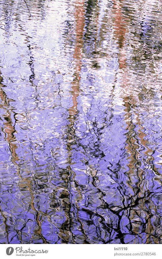 Bewegung Natur Wasser weiß schwarz Frühling See braun Wind Schönes Wetter Seeufer violett Teich Wasseroberfläche Verzerrung Bewegungsreaktion
