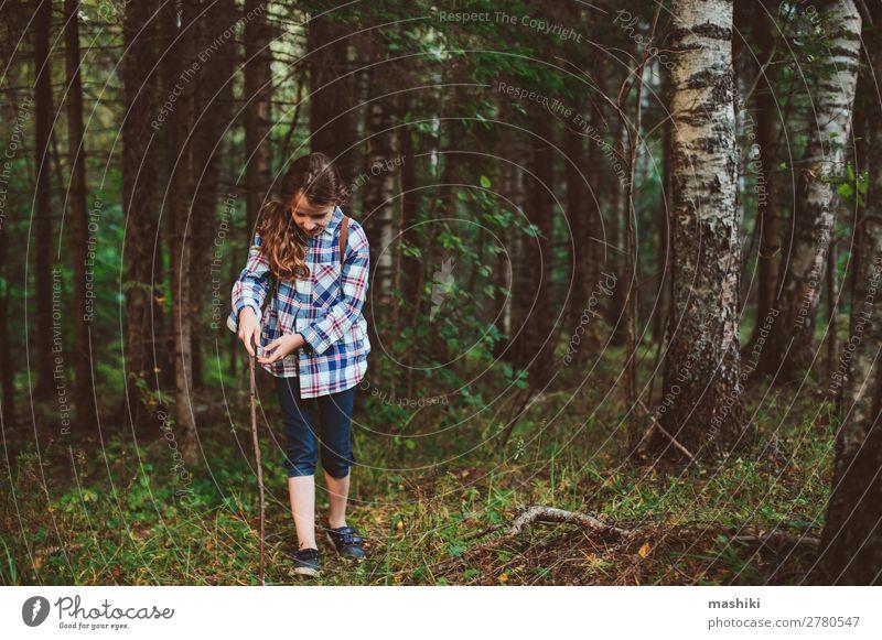 fröhliches Kind Mädchen erkundet den Sommerwald Lifestyle Spielen Ferien & Urlaub & Reisen Abenteuer Freiheit Expedition wandern Kindheit Natur Pflanze Nebel