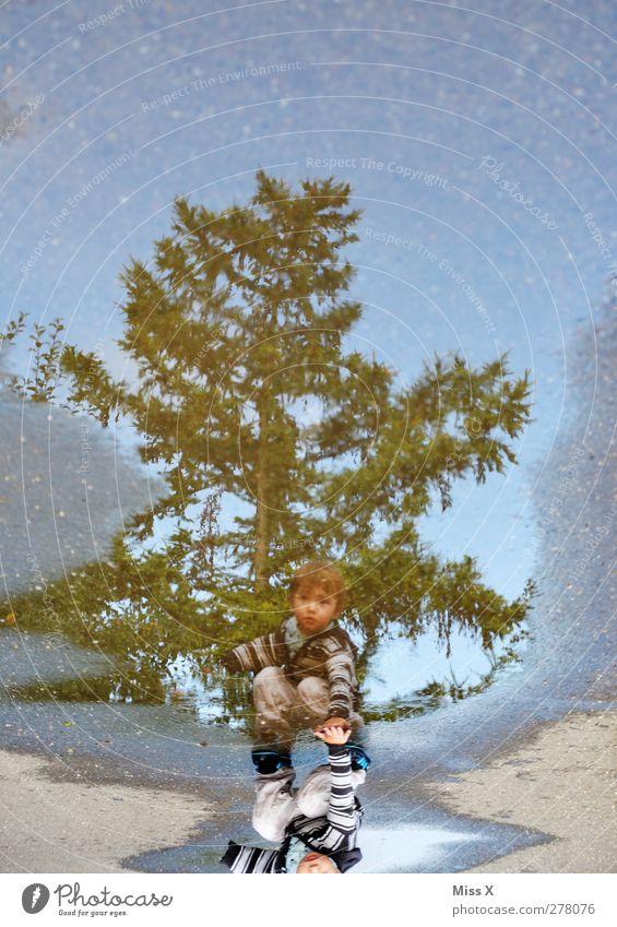 Pfützen-Fips Mensch Kind Kleinkind Kindheit 1 1-3 Jahre Wasser Baum nass Schwimmen & Baden Wege & Pfade Farbfoto mehrfarbig Außenaufnahme Reflexion & Spiegelung