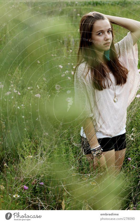 L.N. feminin Junge Frau Jugendliche Erwachsene Leben 1 Mensch Umwelt Natur Pflanze Gras Wiese Bekleidung T-Shirt Stoff brünett langhaarig schön einzigartig