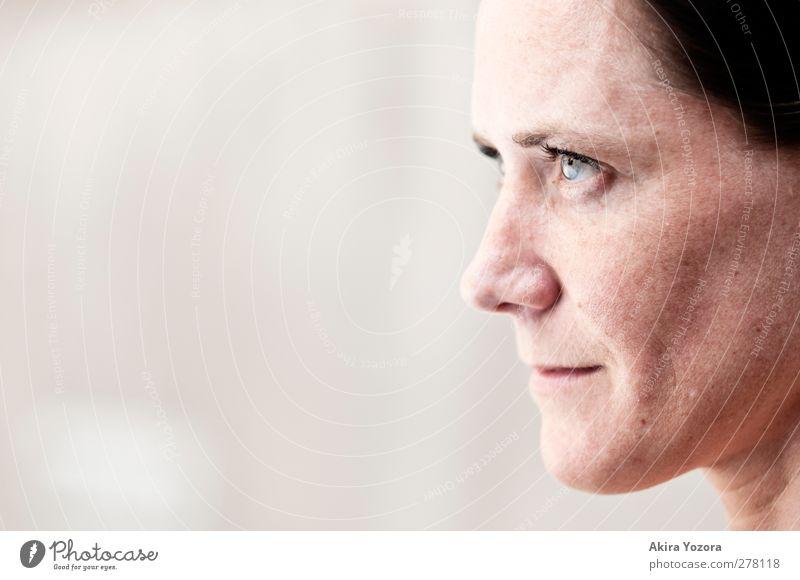 . Mensch Frau blau Erwachsene feminin grau Kopf braun Zufriedenheit beobachten Hoffnung Glaube Mut selbstbewußt Optimismus Sympathie